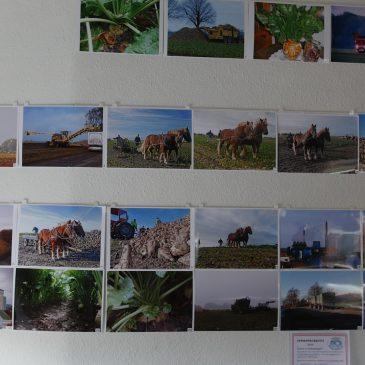 Fotokonkurrence – Roekampagnen 2016
