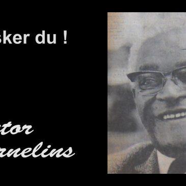 Husker Du ! – Victor Cornelins